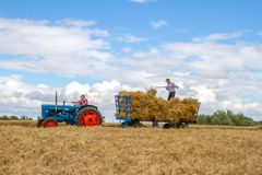 Old vintage blue fordson tractor and trailer in crop field Royalty Free Stock Images