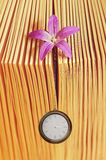 Old vintage book and pocket watch hanging from little pink flowe Stock Image