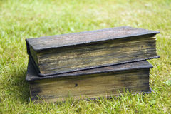 Old Vintage Books. Old leather vintage books, on grass Royalty Free Stock Images