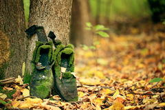Old vintage boots in autmn leaves. Old vintage boots in autmn forest Royalty Free Stock Image