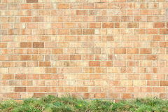 Old vintage brick wall texture background Stock Image