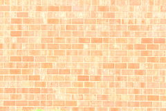 Old vintage brick wall texture background Royalty Free Stock Photo