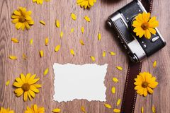 Fresh spring flowers. Greeting card. Old vintage camera on wooden background with white leaf bumagi.Plosky lie. Layout. Space for text and design. Greeting card Royalty Free Stock Images