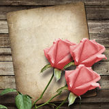 Old vintage card and a bouquet of pink roses Royalty Free Stock Photography