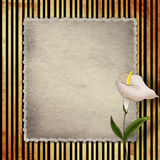 Old vintage card with calla Stock Photo