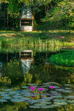 Old vintage colonial well reflecting tropical pond Tobago Caribbean Stock Photography
