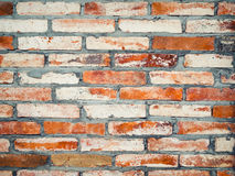 Old vintage dirty brick wall Royalty Free Stock Photography