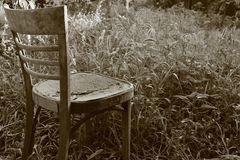 Old vintage empty chair in thickets of green grass in desolate garden sepia. Desperation and loneliness concept. Retro furniture Stock Image