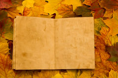 Old vintage empty open book on multi-colored maple leaves. Thanksgiving Royalty Free Stock Photo
