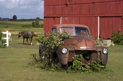 Old Vintage Farm Truck by Barn and Horse. An old truck enjoying its retirement as it rests on the farm by a barn and horse pasture. Rural scene from Wisconsin stock photos