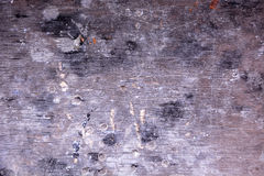 Old, vintage, gray plywood Royalty Free Stock Photography