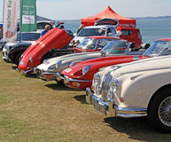Old vintage jags in a row Stock Photo