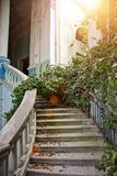 Old vintage marble spiral staircase at abandoned overgrown mansion Stock Images
