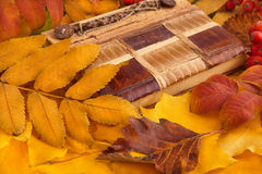 Old vintage notepad and autumn leaves. Old vintage notepad and yellow autumn leaves Stock Image