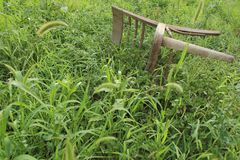Old vintage overturned chair in thickets of grass in desolate garden. Desperation and loneliness concept. Retro furniture Stock Image