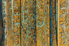 Old vintage painted fence texture. Background texture old painted fence with color peeling off Royalty Free Stock Photo