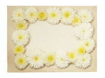 Old vintage paper frame with flowers. Old vintage paper frame with white aster flowers isolated on white Royalty Free Stock Images