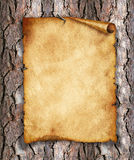 Old, vintage paper on wood. Original background or texture.  Royalty Free Stock Photo