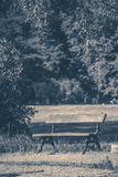 Old vintage photo. Park bench sunny day summer Royalty Free Stock Photo