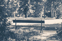Old vintage photo. Park bench sunny day summer Stock Photos