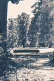 Old vintage photo. Park bench sunny day summer Royalty Free Stock Photography