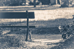 Old vintage photo. Park bench sunny day summer Royalty Free Stock Image