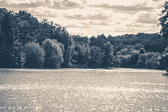 Old vintage photo. River sun glare shore trees forest Stock Image