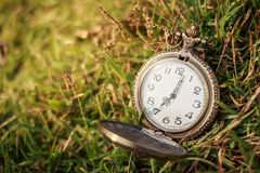 Old vintage pocket clock on grass. Stock Photo