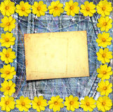 Old vintage postcard with beautiful yellow flowers on jeans Stock Images