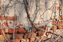 Old Vintage Red Brick Wall With Sprinkled Gray Cement Plaster Texture Background royalty free stock images