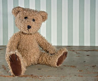 Old vintage teddy bear Stock Image
