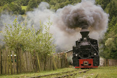 Old vintage train in green forest with big smoke Royalty Free Stock Images