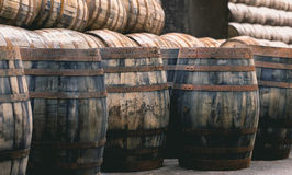 Old vintage whisky barrels filled of whiskey placed in order in Royalty Free Stock Images