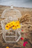 Old, vintage white iron cage with yellow flowers and dry wheat stalks inside, close up. Beautiful wedding autumn decor, decoration royalty free stock photos