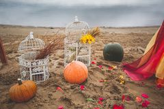 Old, vintage white iron cages with yellow flowers and dry wheat stalks inside, close-up. Next to pumpkin and rose petals. royalty free stock photography