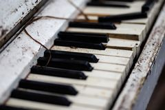 Old vintage white piano in a forest. Spooky royalty free stock photo