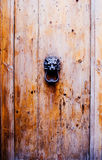 Old, vintage wood door with a decorated lion head handle Stock Photography