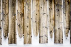 Old vintage wooden wall with snow. Winter and christmas background. Old vintage wood wall with snow. Winter and christmas background. Wood planks, boards are royalty free stock images