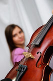 Old violin Stock Photos