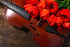 Old violin. Fragrant tulips near old violin on wooden background Stock Images