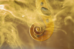 Old violin head surrended with colored smoke and flames. Music concept royalty free stock image