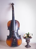 Old violin leaning against the wall near a flower vase with roses Stock Image