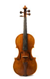 Old violin over white Royalty Free Stock Photo