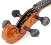 Old Violin Scroll. On White Back Ground Stock Photography