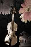 Old violins and flowers Royalty Free Stock Images