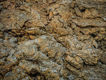 Old volcanic lava close up Stock Image