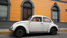 Old vw beetle in merida Royalty Free Stock Images