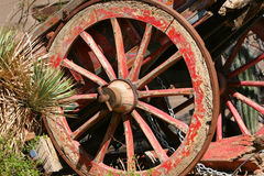 Old Wagon Among Cacti. An old antique rustic wagon among cactus plants Royalty Free Stock Image