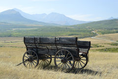 Old wagon in the field. An old, wooden wagon abandoned in the field Royalty Free Stock Image