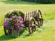 Old Wagon with Flowers Stock Image